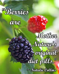 Berries are mother natures original diet pills