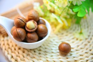 Macadamia nuts in the shell